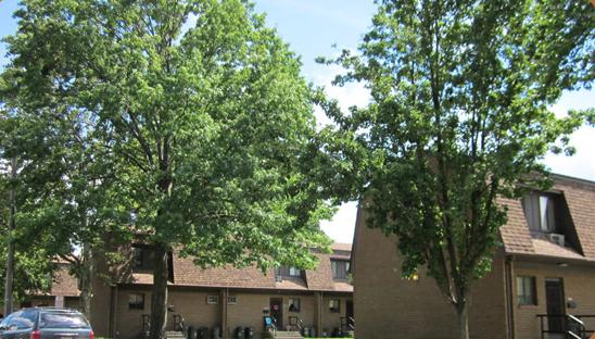 De Vries Park Family Complex